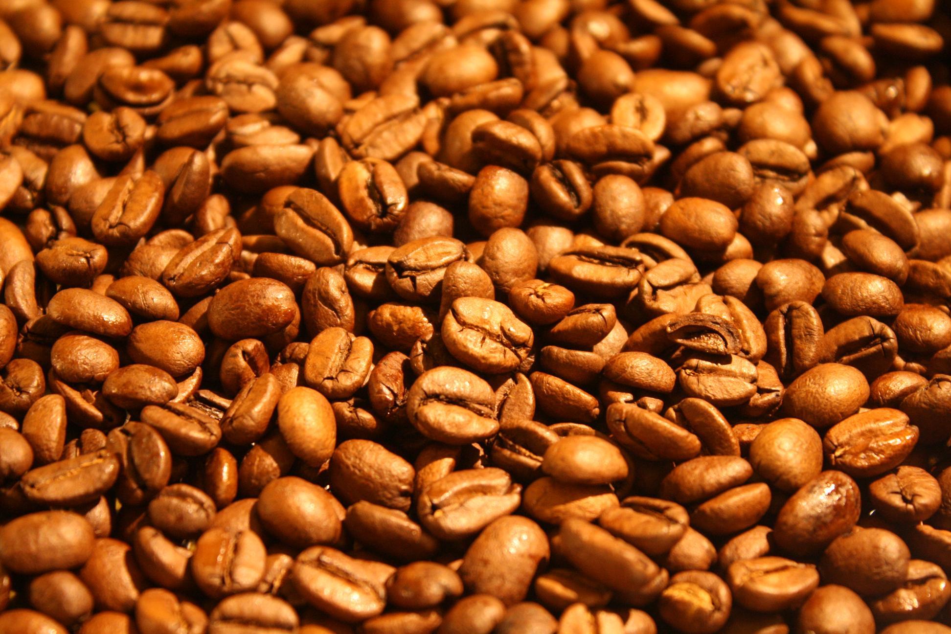 スペシャルティコーヒーをネットで小ロットから購入出来る生豆業者4選!